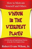 Wisdom in the Weirdest Places, Robert Wilson, 061593479X