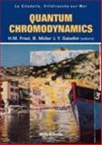 Quantum Chromodynamics, , 9810244797