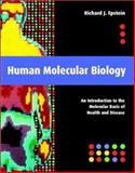 Human Molecular Biology : An Introduction to the Molecular Basis of Health and Disease, Epstein, Richard J., 052164481X