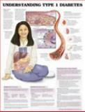 Understanding Type 1 Diabetes Anatomical Chart, Anatomical Chart Company Staff, 1587794853
