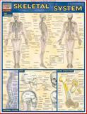 Skeletal System, BarCharts Inc., Staff, 1572224959