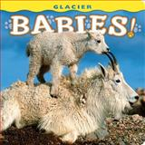 Glacier Babies!, Bob Rozinski (photographers), 1560374985
