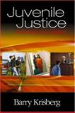 Juvenile Justice : Redeeming Our Children, Krisberg, Barry, 0761925007