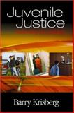 Juvenile Justice : Redeeming Our Children, Krisberg, Barry, 0761925015