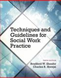 Techniques and Guidelines for Social Work Practice, Bradford W. Sheafor and Charles R. Horejsi, 0205965105