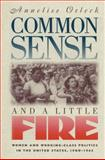 Common Sense and a Little Fire 9780807845110