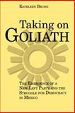 Taking on Goliath, Bruhn, Kathleen, 0271025115