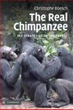 Real Chimpanzee : Sex Strategies in the Forest, Boesch, Christophe, 0521125138