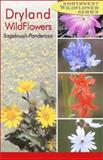 Dryland Wildflowers, Dana Visalli and Derrick Ditchburn, 0888395175