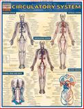 Circulatory System, Inc. BarCharts, 1572225246