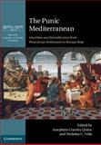 The Punic Mediterranean : Identities and Identification from Phoenician Settlement to Roman Rule, , 110705527X