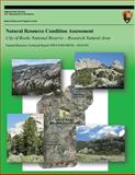 Natural Resource Condition Assessment City of Rocks National Reserve ? Research Natural Area, Jack Bell, 1491095288