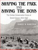 Shaping the Park and Saving the Boys, Robert W. Audretsch, 1457505290