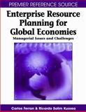 Enterprise Resource Planning for Global Economies, Carlos Ferran and Ricardo Salim, 1599045311