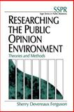 Researching the Public Opinion Environment 9780761915317