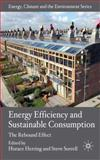 Energy Efficiency and Sustainable Consumption 9780230525344