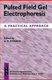 Pulsed Field Gel Electrophoresis : A Practical Approach, , 0199635358