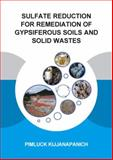 Sulfate Reduction for Remediation of Gypsiferous Soils and Solid Wastes : UNESCO-IHE PhD Thesis, Kijjanapanich, Pimluck, 1138015350