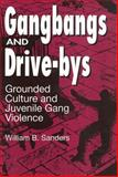 Gangbangs and Drive-Bys : Grounded Culture and Juvenile Gang Violence, Sanders, William B., 0202305376