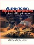 American Masculinities 9780761925408