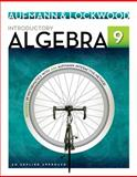 Introductory Algebra 9th Edition