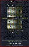 Small Pieces Loosely Joined, Edward Shirley and David Weinberger, 0738205435