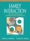 Family Interaction : A Multigenerational Developmental Perspective, Anderson, Stephen A. and Sabatelli, Ronald M., 0205485472