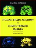 Human Brain Anatomy in Computerized Images, Damasio, Hanna, 0195165616