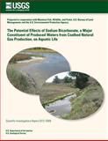 The Potential Effects of Sodium Bicarbonate, a Major Constituent of Produced Waters from Coalbed Natural Gas Production, on Aquatic Life, U. S. Department U.S. Department of the Interior, 1497485657