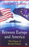 Between Europe and America 9780333555712