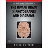 The Human Brain in Photographs and Diagrams, Nolte, John and Angevine, Jay B., Jr., 0323045731