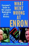 What Went Wrong at Enron 1st Edition