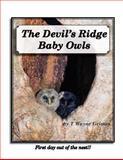 The Devil's Ridge Baby Owls, T. Grimes, 1478105828