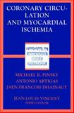 Coronary Circulation and Myocardial Ischemia : An Affair of the Heart, , 3540625844