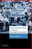 Courting Democracy in Mexico : Party Strategies and Electoral Institutions, Eisenstadt, Todd A., 0521035880