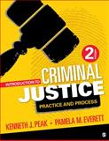 Introduction to Criminal Justice 2nd Edition