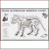 Feline Acupressure Meridian Chart, Anatomical Chart Company Staff, 1587795930