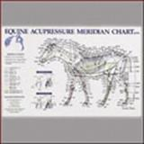 Equine Acupressure Meridian Chart, Anatomical Chart Company Staff, 1587795957