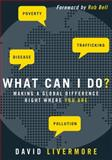 What Can I Do?, David Livermore, 031032596X
