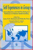 Self-Experiences in Group : Intersubjective and Self Psychological Pathways to Human Understanding, , 1853025976