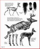 The Art of Painting and Drawing Animals, Fredric Sweney, 0486445984