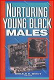 Nurturing Young Black Males : Challenges to Agencies, Programs, and Social Policy, Mincy, 0877665982