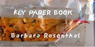 Fly Paper Book, Rosenthal, Barbara, 0972826009