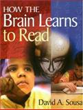 How the Brain Learns to Read, , 1412906016