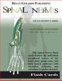 Spinal Nerves : Flash Cards, Flash Anatomy Staff, 1878576046