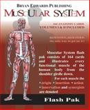 Muscular System 2nd Edition
