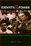 Identity and Power : Puerto Rican Politics and the Challenge of Ethnicity, Cruz, Jose E., 1566396050