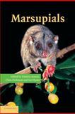 Marsupials, , 1107406072