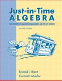 Just-in-Time Algebra for Students of Calculus in Management and the Life Sciences 2nd Edition