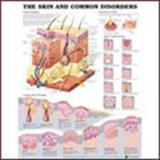 The Skin and Common Disorders, Anatomical Chart Company Staff, 1587796120